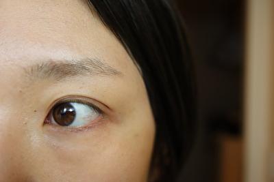セルヴォーク、インディケイトアイブロウパウダー5番を試す前の自分の眉